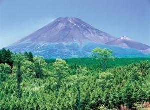 富士山 富士市 夏(観光協会)